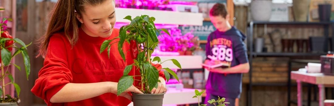 GrowWizzKid ervaring in (V)SO: Jeroen Berghuis – De Bolster Voorst